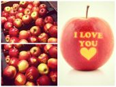 "Valentīna dienā Rimi tirgo ""I love you"" ābolus"